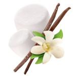 Profile picture of Vanilla